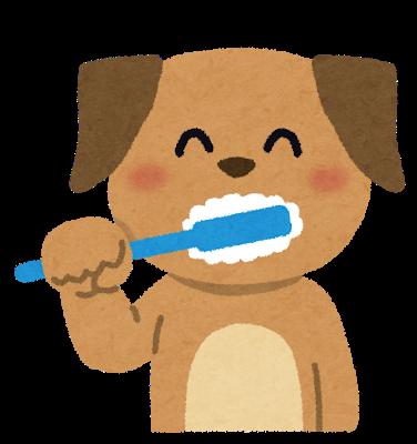 犬も歯が命!